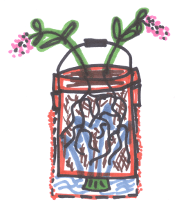 Self-watering bucket container diagram
