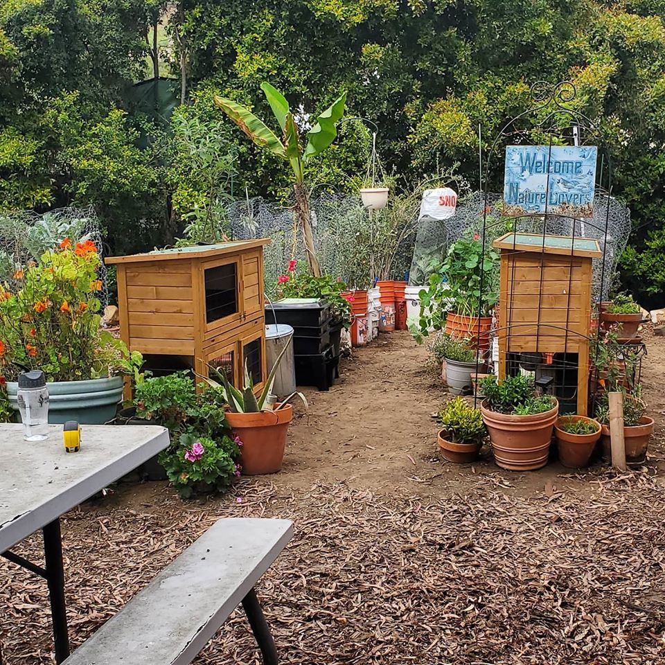 The Learn & Grow Test Garden